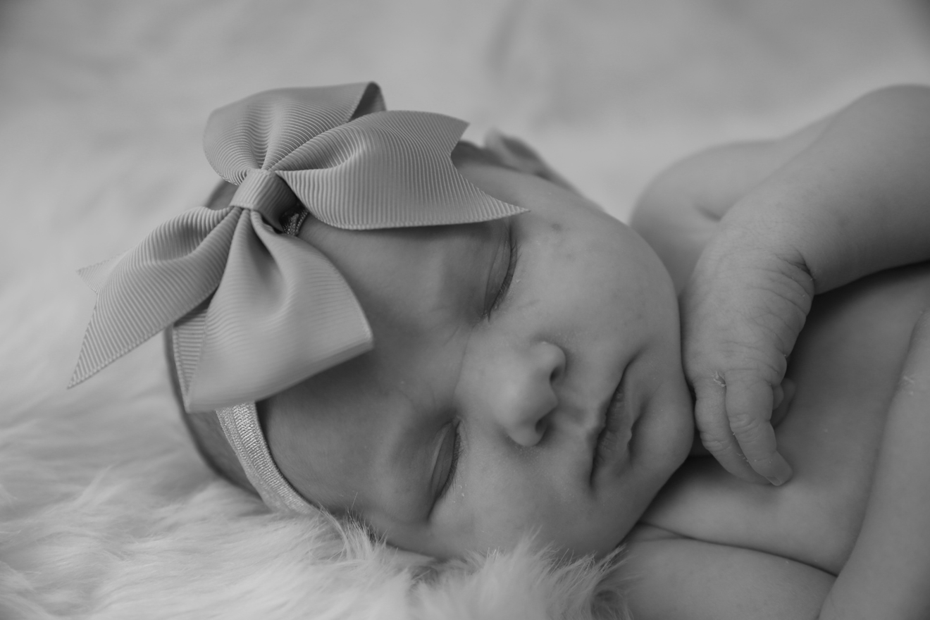 bow beau new born baby photography